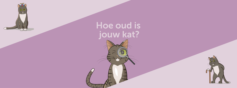 Hoe oud is een kat in mensenjaren?